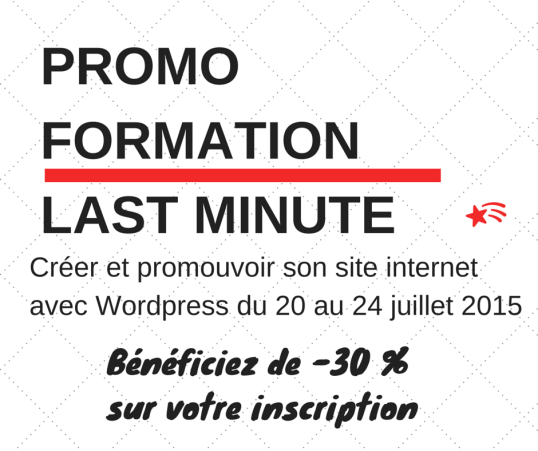 Promotion formation WordPress